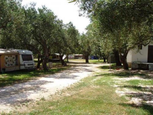 Camping Corali image5
